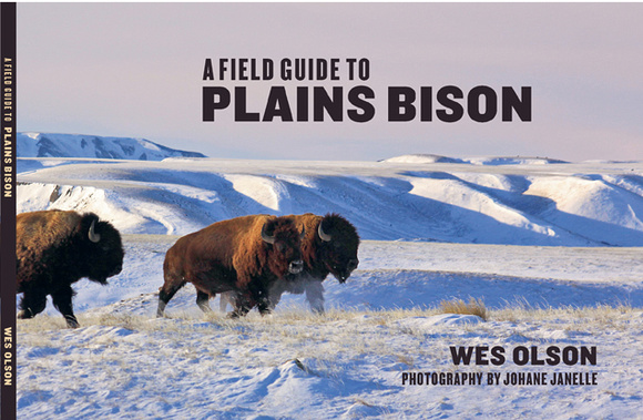 Field Guide to Plains Bison - $24.95